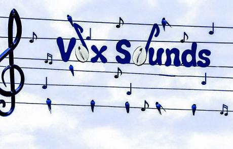 logo Vox Sounds