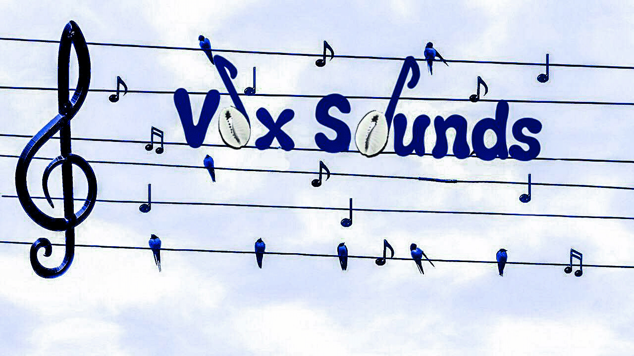 logo Vox Sounds